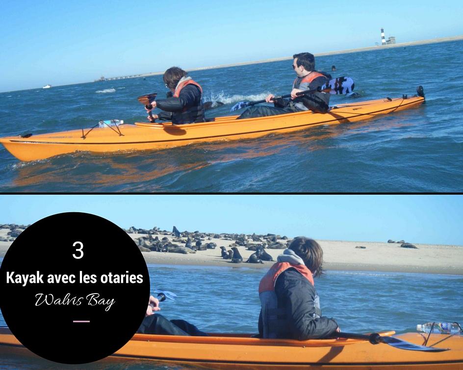 kayak avec les otaries en Namibie