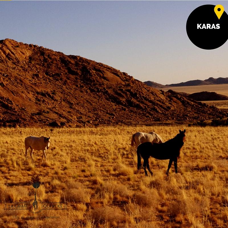 karas région namibie