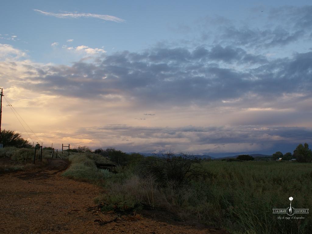 route-des-jardins-afrique-du-sud (4)