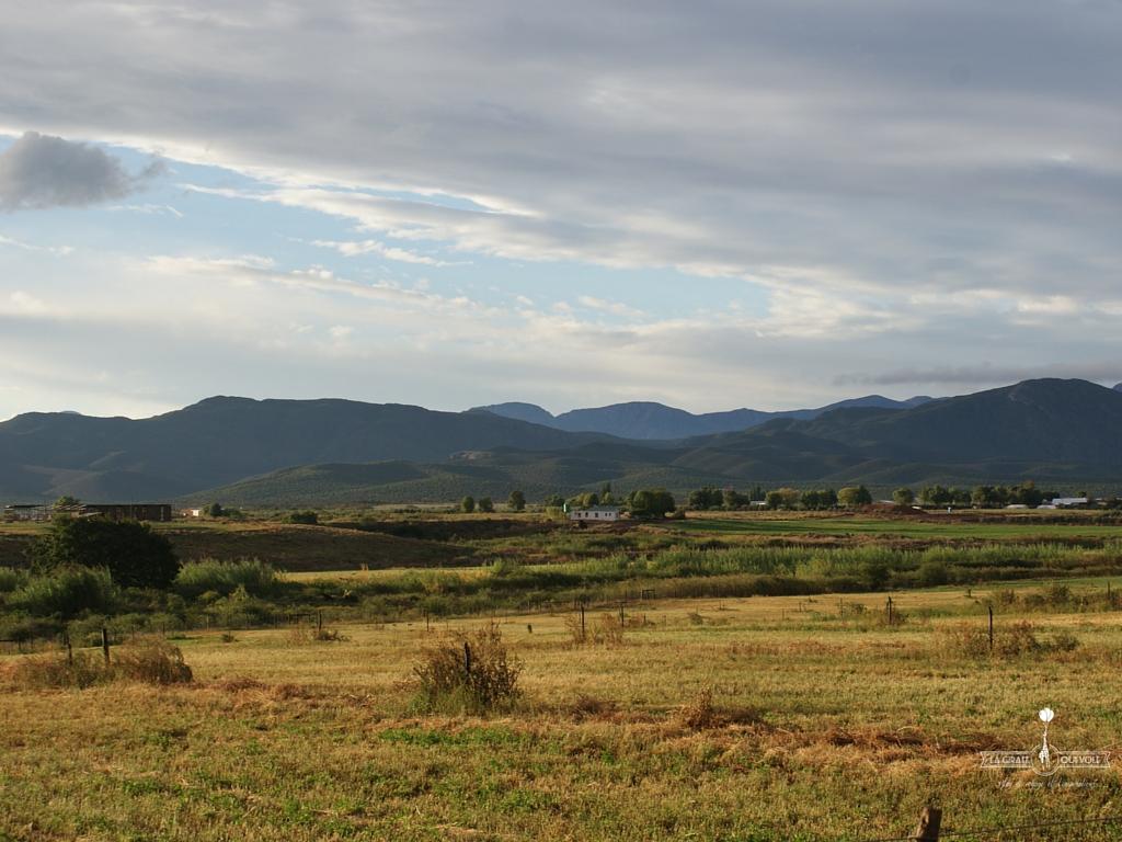 route-des-jardins-afrique-du-sud (5)