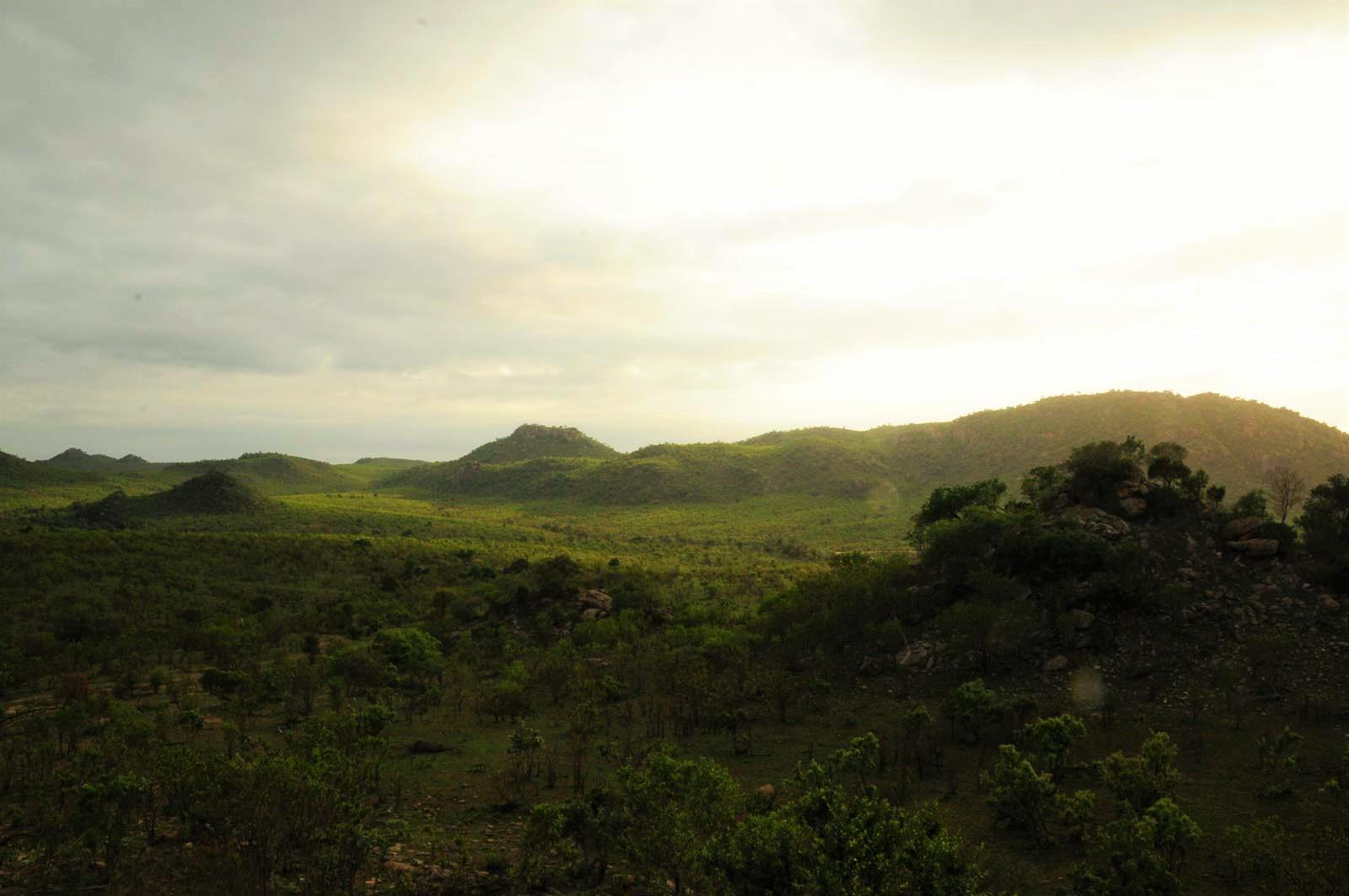 blog voyage parc kruger afrique du sud