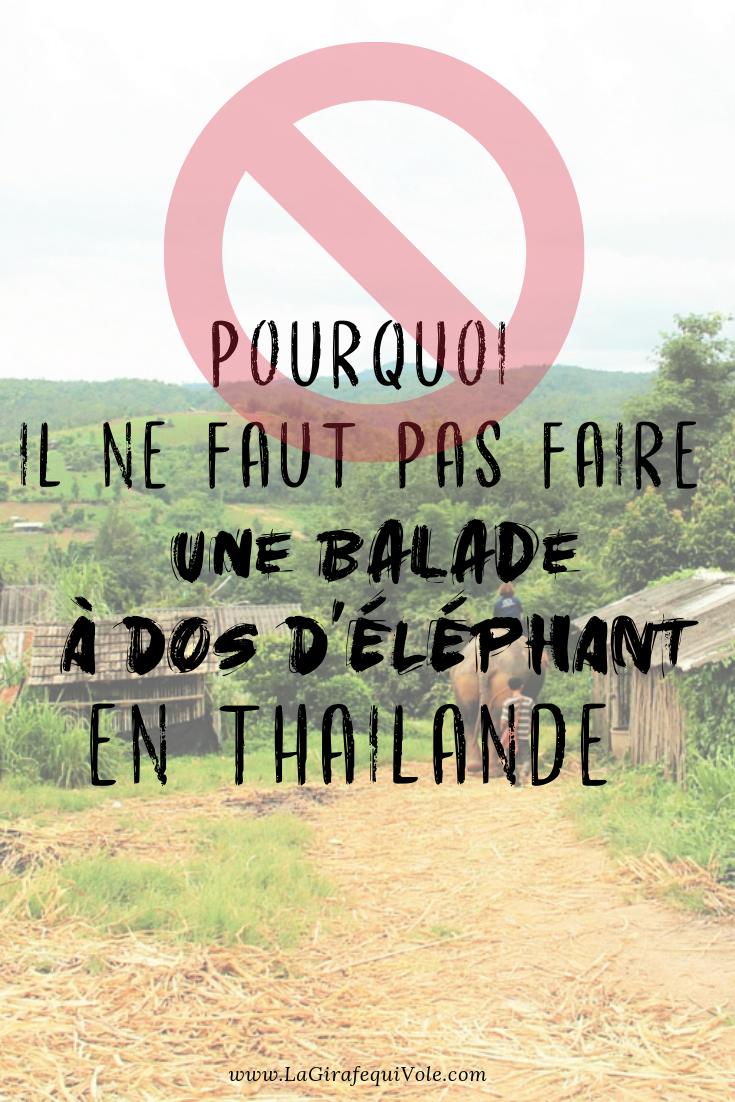 balade à dos d'éléphant en thailande