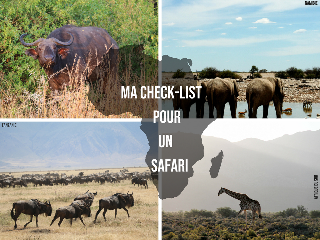 checklist safari