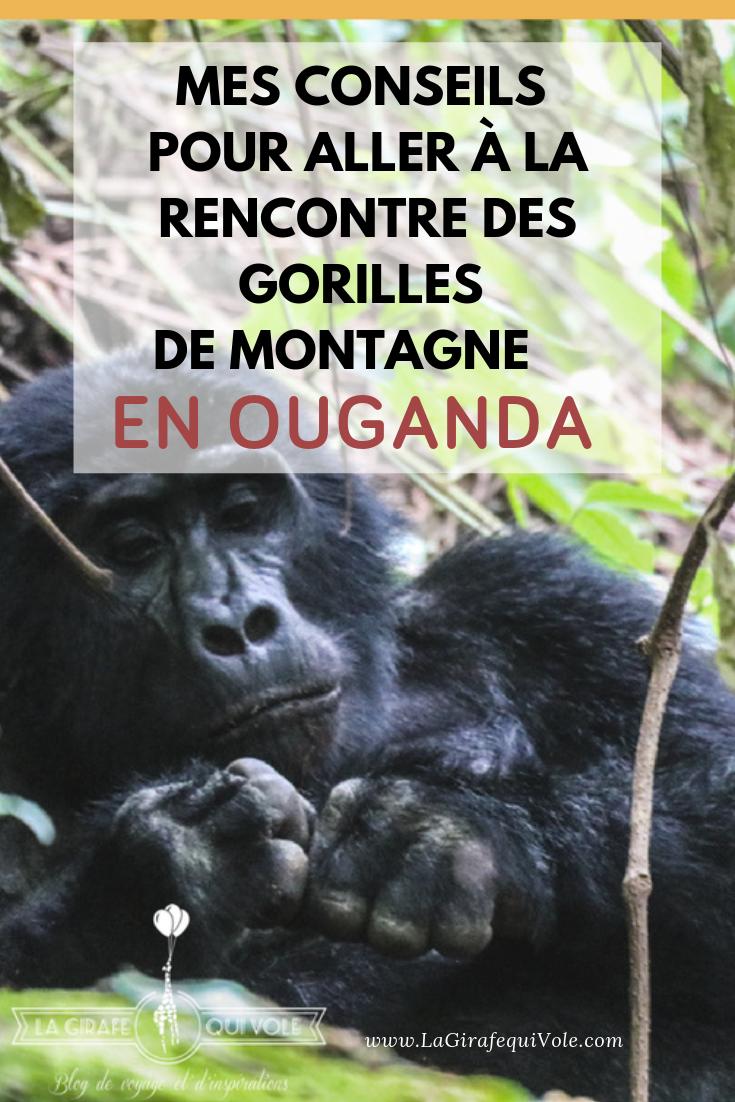 trekking gorilles Ouganda