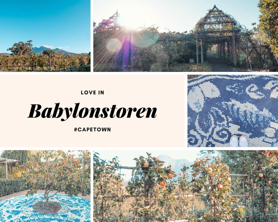 Cape Town afrique du sud babylonstoren