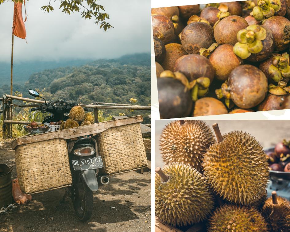 itinéraire voyage famille Bali