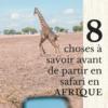 partir en safari en Afrique