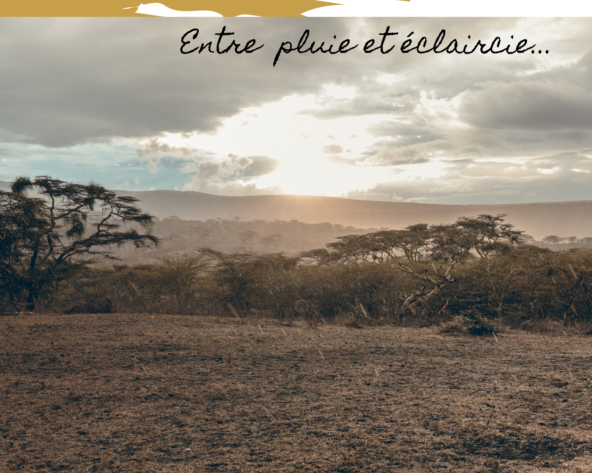 trek Tanzanie